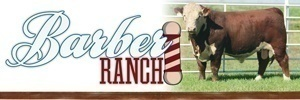Barber Ranch 300×100
